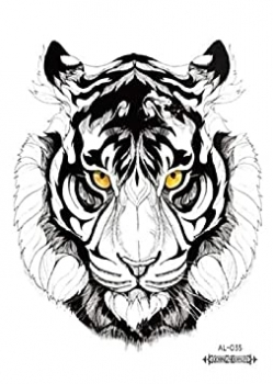 Eye of the Tiger - Large